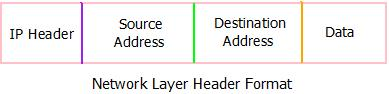 This image describes the header format of the network layer in computer networks.